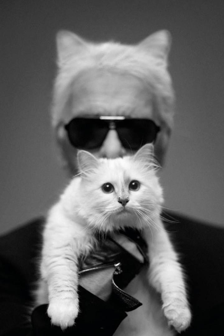 Cô mèo của huyền thoại Karl Lagerfeld sẽ là em boss giàu nhất thế giới với 4600 tỷ?