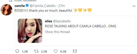 Bất ngờ nhắc đến nhau, có khi nào Blackpink sẽ hợp tác với chủ nhân Havana Camila Cabello trong sản phẩm mới?