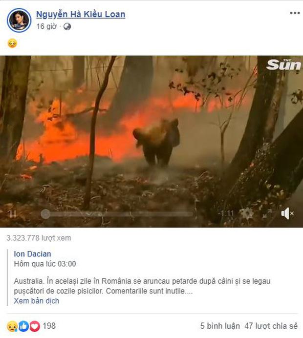 Tăng Thanh Hà, Trịnh Thăng Bình và dàn sao Việt đau lòng về đại thảm họa cháy rừng ở Úc