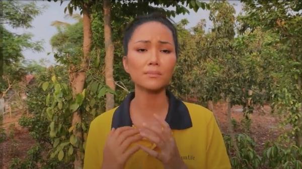 Hồ Ngọc Hà, Đông Nhi và hơn 70 nghệ sĩ hát tri ân các y, bác sĩ