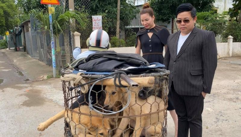 Ca sĩ Quang Lê ra tay giải cứu 5 chú chó đang bị đưa đến lò mổ khiến dân mạng xúc động