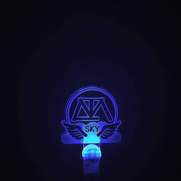 Chẳng thua kém gì các idol Hàn Quốc, ca sĩ Việt cũng sở hữu những lightstick độc đáo khiến FC phổng mũi tự hào