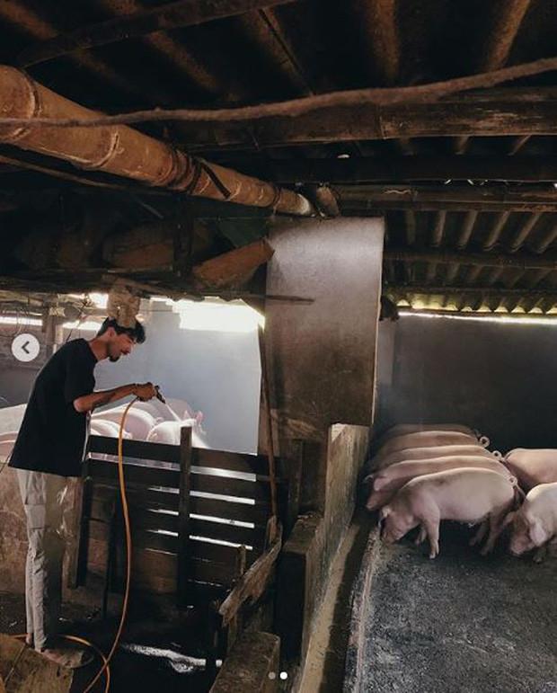 Đen Vâu diện dép tổ ong khoe hình ảnh người nông dân chăn lợn đích thực khiến CĐM phấn khích