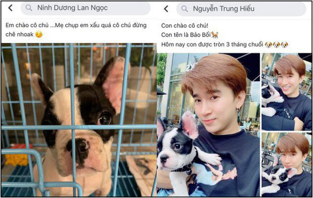 Phản ứng của sao Việt khi lộ ảnh hẹn hò: Sơn Tùng - Thiều Bảo Trâm hạn chế nhắc tên nhau