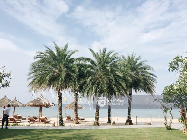 Không gian lễ cưới Đông Nhi - Ông Cao Thắng đã hoàn thiện, đẹp lung linh như cổ tích giữa biển đảo Phú Quốc