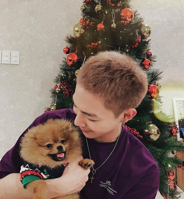 Vợ chồng Trấn Thành - Hari Won và dàn sao Việt khoe ảnh vui vẻ, rạng rỡ ngày lễ Giáng sinh