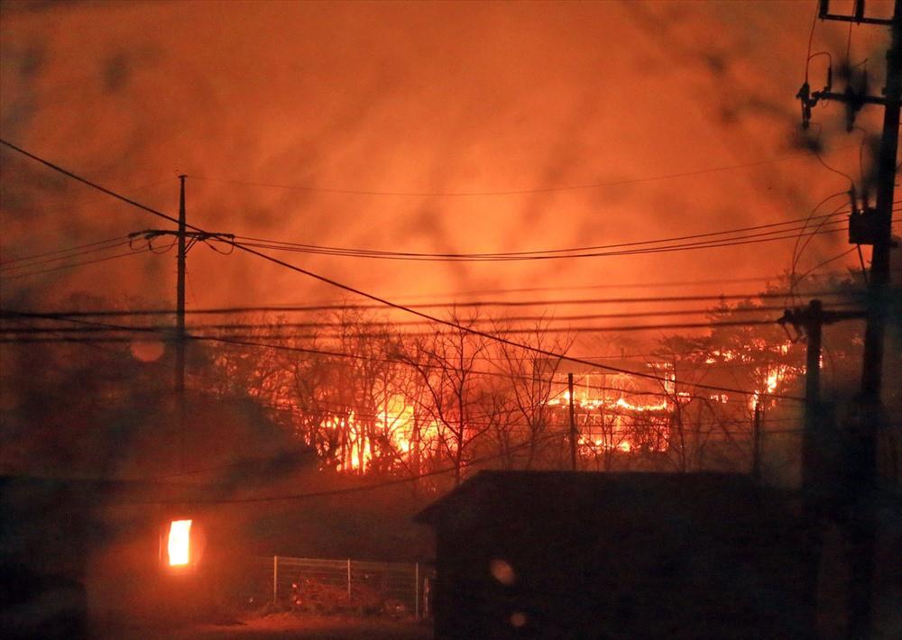 Heechul, IU cùng loạt sao Hàn quyên góp số tiền khủng giúp đỡ nạn nhân vụ cháy rừng kinh hoàng