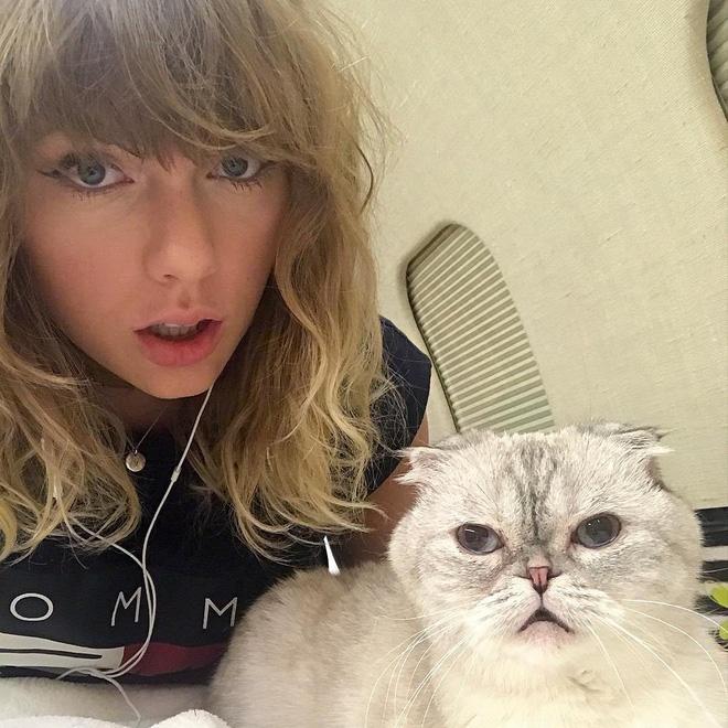 Có thể bạn chưa biết: Taylor Swift chưa lấy chồng nhưng đã có đến 3 đứa con