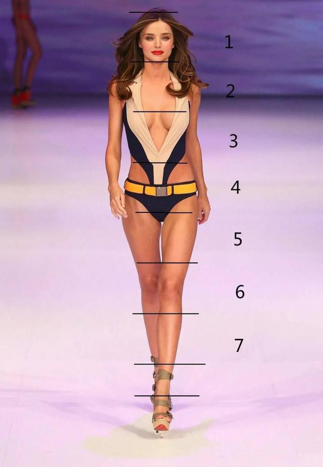 Lý do Lisa (BLACKPINK) có khả năng chinh phục xuất sắc mọi trang phục: tỷ lệ cơ thể 9:1 hoàn mỹ hiếm thấy