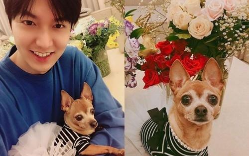 Vừa xuất ngũ, Lee Min Ho khoe ảnh bé cưng của mình lên trang cá nhân nhưng điều này mới làm người hâm mộ bất bình