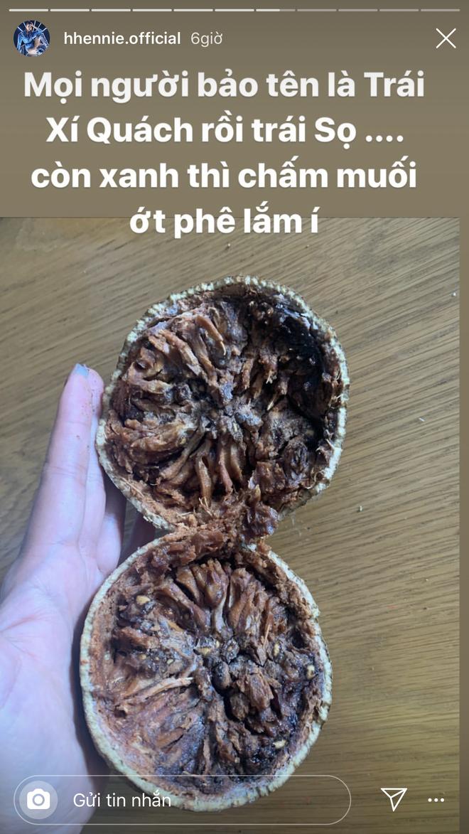 HHen Niê hồn nhiên chế tên mới cho loại trái đặc biệt của miền Tây khiến fan ngả ngửa